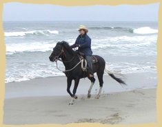Click to enlarge. Beach ride on horse vacations with the Equine Research Foundation.