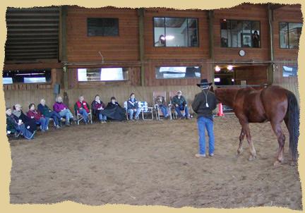 Horse clinic talk.