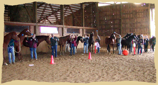 Horse clinic group.