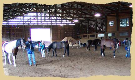 Horse clinic.