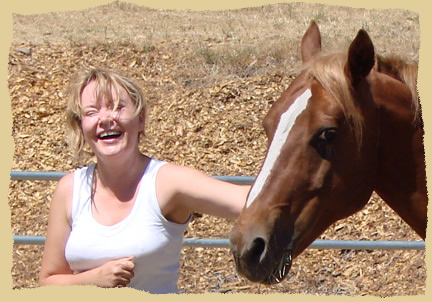 Click to enlarge. Forming good relationships during positive reinforcement clinics with the Equine Research Foundation.