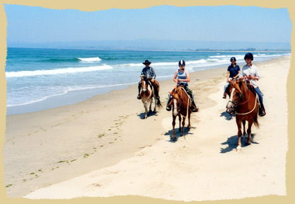 Click to enlarge. Horse riding at the beach on a learning vacation with the Equine Research Foundation.