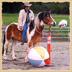 Horse overcoming instincts.