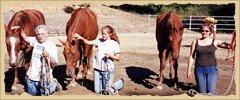 Horsemanship - group knee halter.