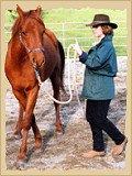 Horsemanship - side pass crop.