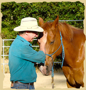 Click to enlarge. Bonding with horses on a learning vacation with the Equine Research Foundation.
